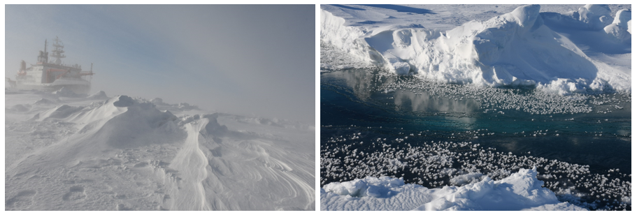 Blowing or drifting snow above sea ice during a blizzard; (RS) the very heterogeneous sea ice surface as a potential source for atmospheric particles: snow, brine, frost flowers, refrozen leads (photo credit MM Frey).